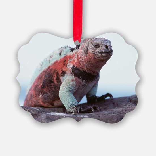 Marine iguana Ornament