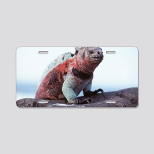 Marine iguana Aluminum License Plate