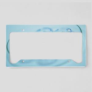 Micro-petri dishes License Plate Holder