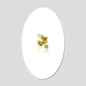 Avian influenza virus, TEM 20x12 Oval Wall Decal