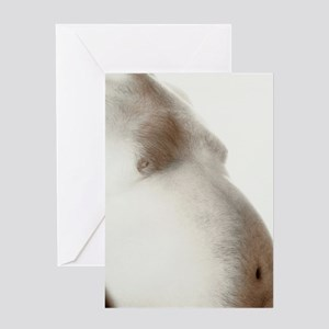 Bare abdomen of an obese man Greeting Card