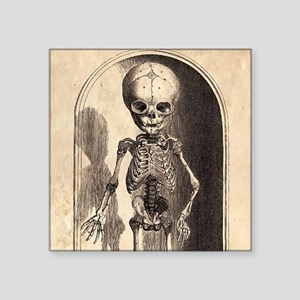 "Skeletal Child Alcove Square Sticker 3"" x 3"""