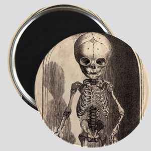Skeletal Child Alcove Magnet