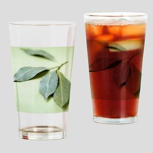 Bay leaves (Laurus nobilis) Drinking Glass