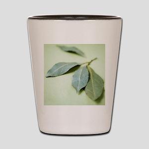 Bay leaves (Laurus nobilis) Shot Glass