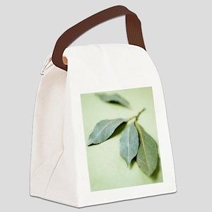 Bay leaves (Laurus nobilis) Canvas Lunch Bag