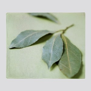 Bay leaves (Laurus nobilis) Throw Blanket