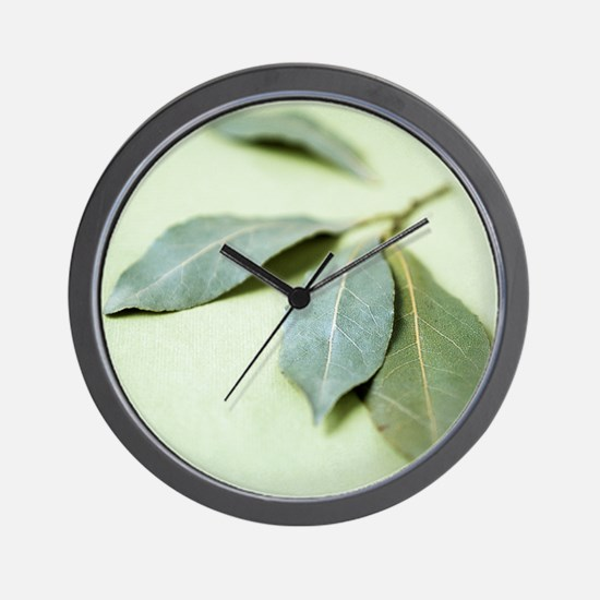 Bay leaves (Laurus nobilis) Wall Clock