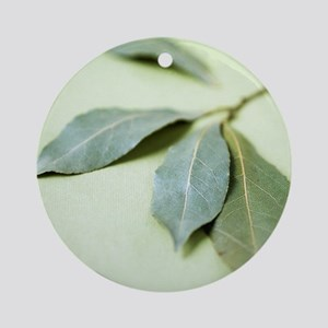 Bay leaves (Laurus nobilis) Round Ornament