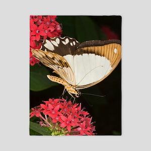 Mocker swallowtail butterfly Twin Duvet
