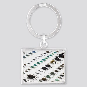 Beetle collection Landscape Keychain