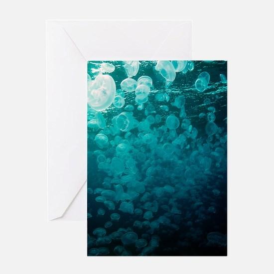 Moon jellyfish Greeting Card