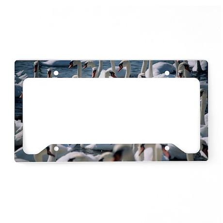 z8280106 License Plate Holder