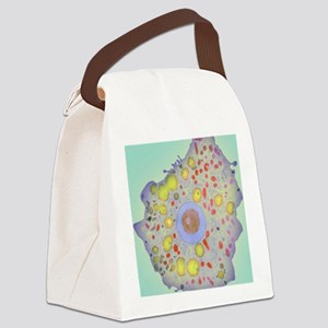 z1100189 Canvas Lunch Bag