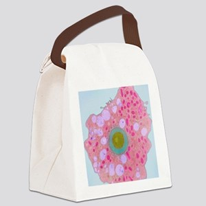 z1100185 Canvas Lunch Bag