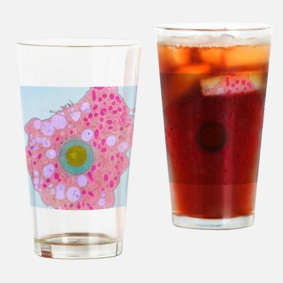 z1100185 Drinking Glass