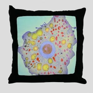 Naegleria fowleri protozoan, TEM Throw Pillow