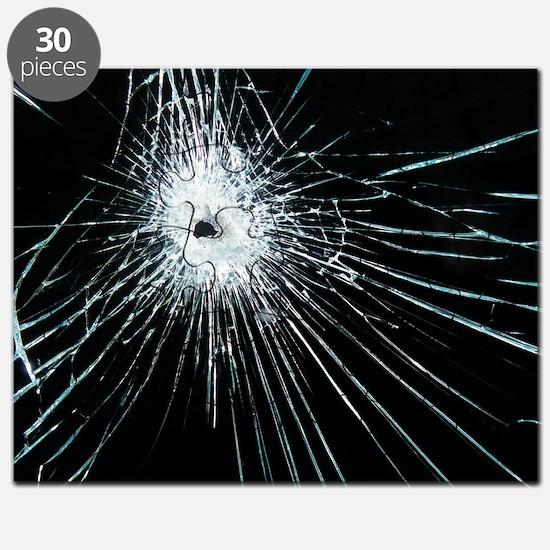 Broken glass Puzzle