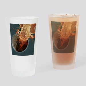 Cancer cell migrating, SEM Drinking Glass