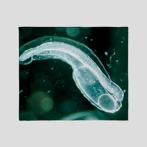 Newly-hatched glass eel embryo, Angu Throw Blanket