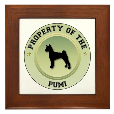 Pumi Property Framed Tile