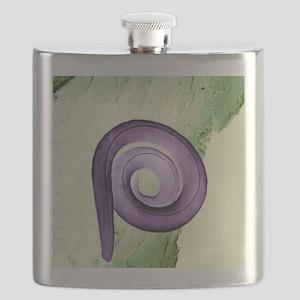 Nematode worm, SEM Flask