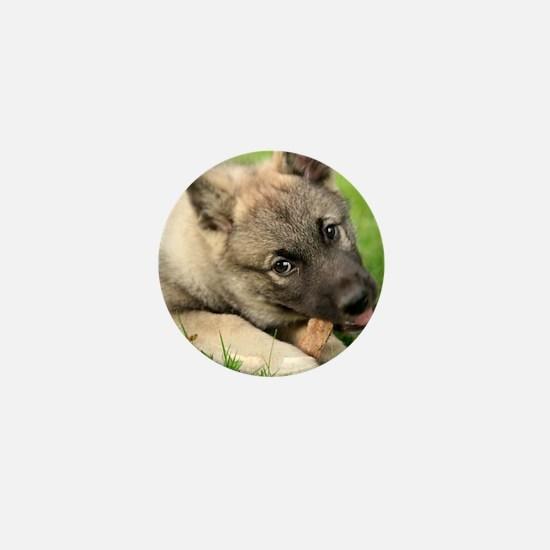 Norwegian elkhound puppy Mini Button