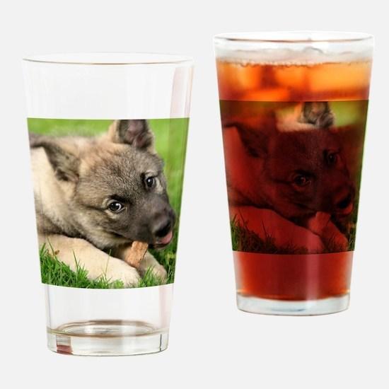 Norwegian elkhound puppy Drinking Glass