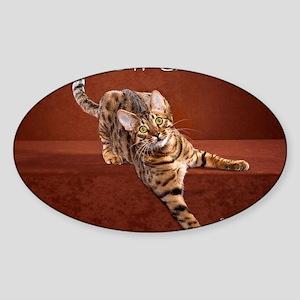 Show Cat Calendar Sticker (Oval)