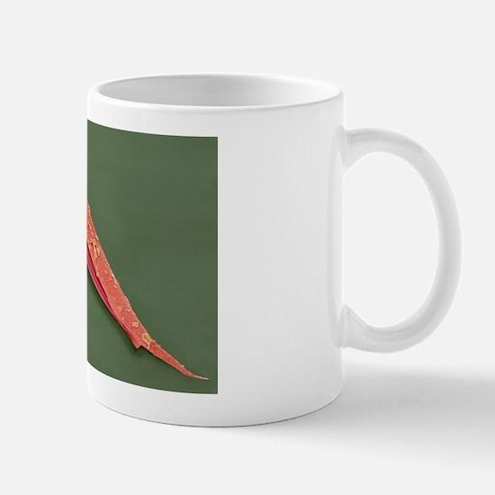 z1800259 Mug