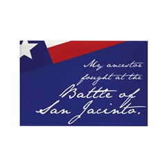 Battle of San Jacinto Rectangle Magnet