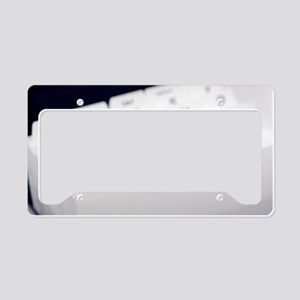 Card index box License Plate Holder
