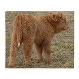 Highland cattle Fleece Blankets