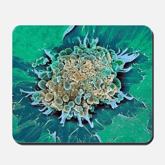 Cancer cell apoptosis, SEM Mousepad