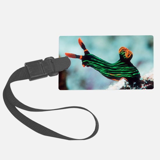 Nembrotha kubaryana sea slug Luggage Tag