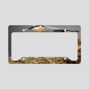 Nuthatch License Plate Holder