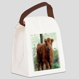 Highland Calf  Canvas Lunch Bag