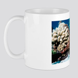 Octopus hunting Mug