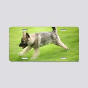Norwegian elkhound puppy Aluminum License Plate