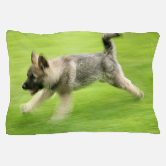 Norwegian elkhound puppy Pillow Case