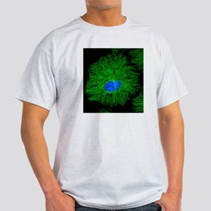 Cell microtubules, light micrograph Light T-Shirt