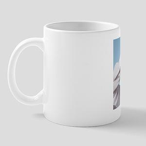 Chlorine displacing bromine Mug