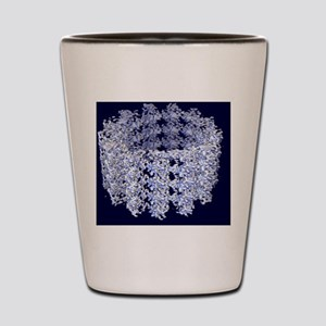 Cell microtubule structure Shot Glass