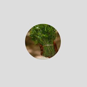 Chat (Catha edulis) Mini Button