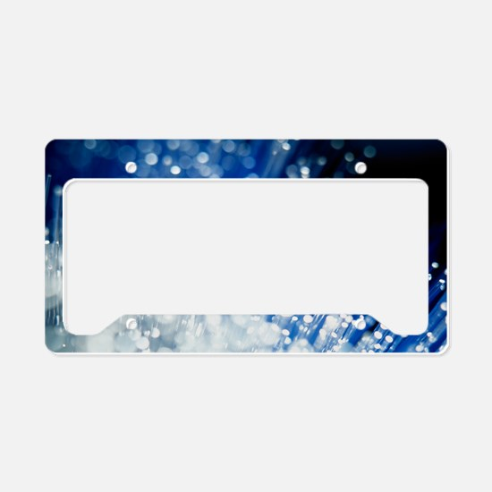Optical fibres License Plate Holder