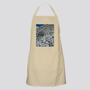 Oyster shells Apron