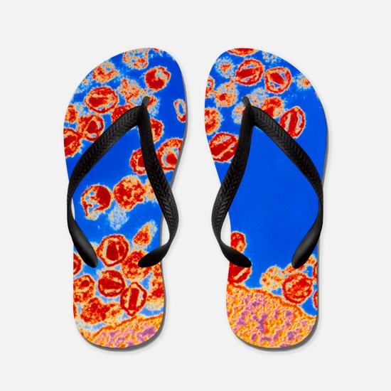 Col TEM of HIV viruses budding from a T Flip Flops