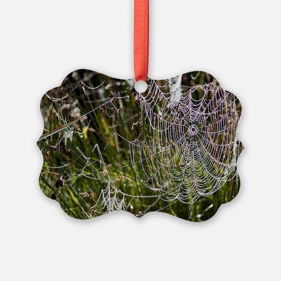 Orb-weaver spider webs Ornament