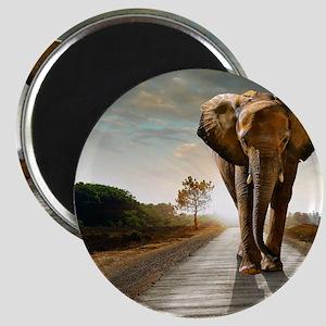 Big Elephant Magnet