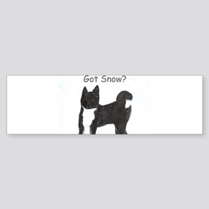 Got Snow? Bumper Sticker
